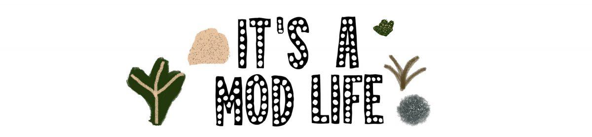 Its A Mod Life